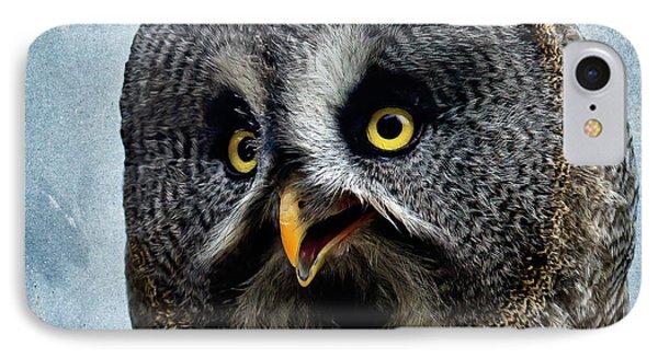 Allocco Della Lapponia - Tawny Owl Of Lapland IPhone Case by Alfio Finocchiaro