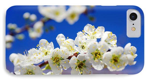 Almond Blossom Phone Case by Carlos Caetano