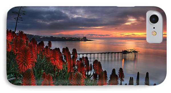 Aloes Last Light IPhone Case by Scott Cunningham