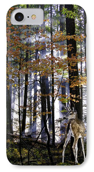 Alone In The Mist IPhone Case by Diane Schuster