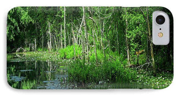 Along The Bank Of A Pristine Cape Cod River IPhone Case by Constantine Gregory