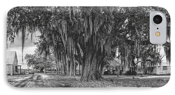Along The River Road Near Vacherie La Phone Case by Kathleen K Parker