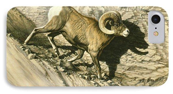 Along The Wall-bighorn Ram IPhone Case by Paul Krapf