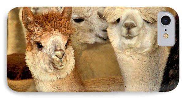 Alpaca Friends IPhone Case