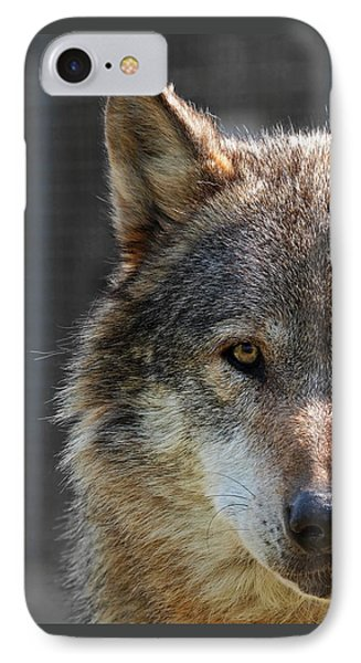 Alpha Male Wolf - Don't Mess With Me IPhone Case by Gill Billington