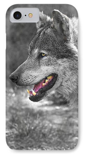 Alpha Male Wolf - You Look Tasty IPhone Case by Gill Billington