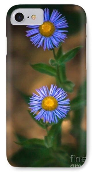 Alpine Aster Phone Case by Robert Bales