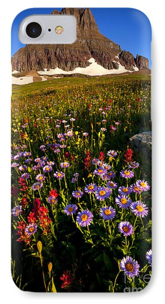 Alpine Meadow IPhone Case by Aaron Whittemore