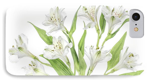 South America iPhone 7 Case - Alstroemeria by Mandy Disher