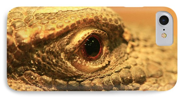 Always Watch Your Back - Benti Uromastyx Lizard Phone Case by Inspired Nature Photography Fine Art Photography