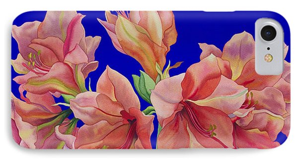 Amaryllis In A Jug IPhone Case by Christopher Ryland
