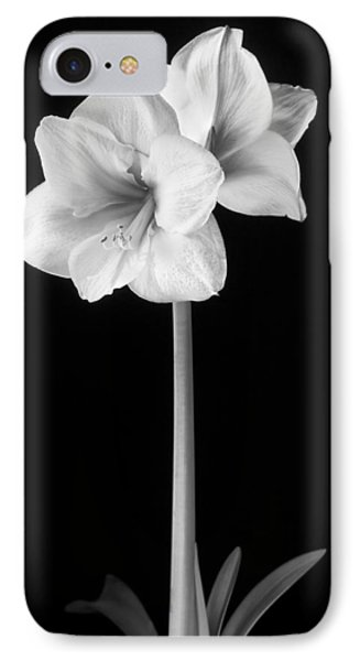 Amaryllis In Black And White IPhone Case by Adam Romanowicz
