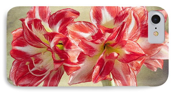 Amaryllis Red Phone Case by Jeff Kolker