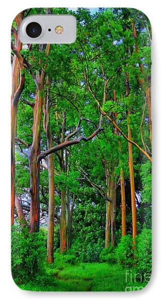 Amazing Rainbow Eucalyptus IPhone Case by DJ Florek