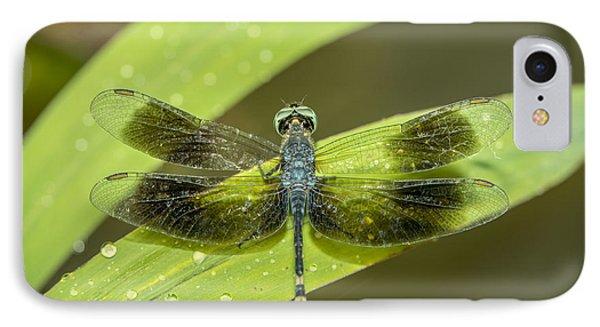 Amazon Dragon Fly IPhone Case