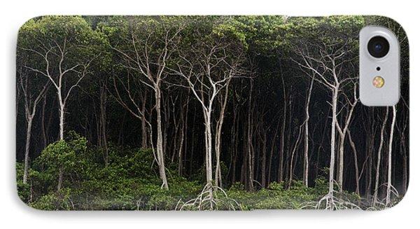 Amazon Rain Forest Brazil IPhone Case