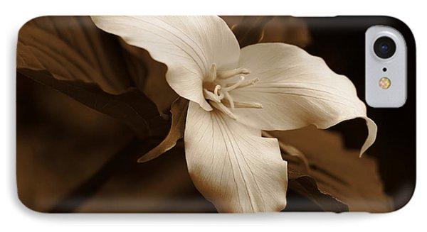 Amber Trillium Wild Flower IPhone Case by Jennie Marie Schell