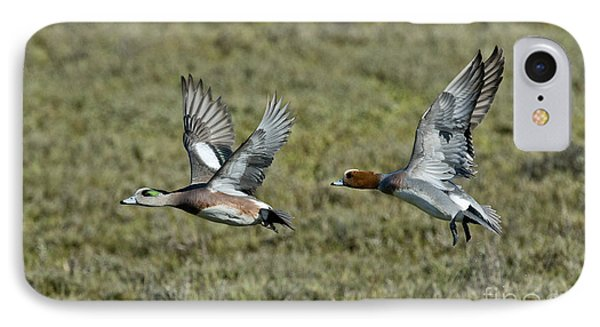 American & Eurasian Wigeons IPhone Case