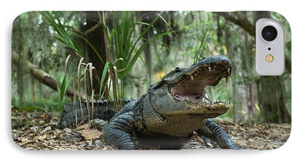 American Alligator (alligator IPhone 7 Case by Pete Oxford