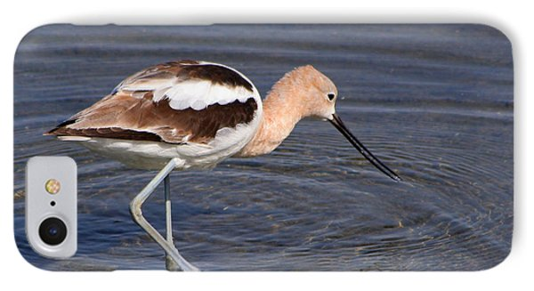 IPhone Case featuring the photograph American Avocet by Bob and Jan Shriner