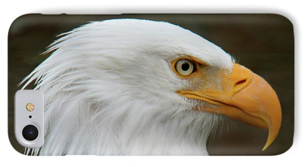 IPhone Case featuring the photograph American Bald Eagle by Bob and Jan Shriner