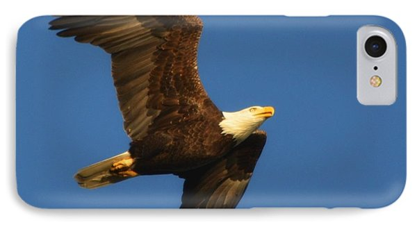 IPhone Case featuring the photograph American Bald Eagle Close-ups Over Santa Rosa Sound With Blue Skies by Jeff at JSJ Photography