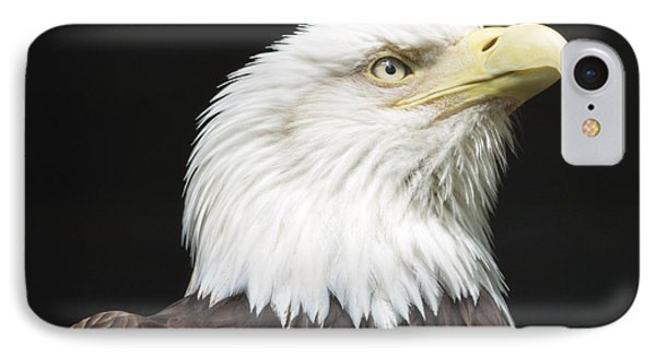 American Bald Eagle Profile IPhone Case by Richard Bryce and Family