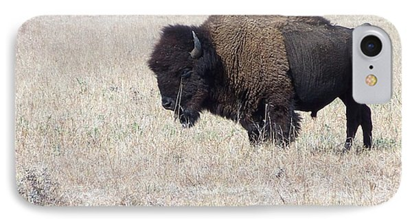 IPhone Case featuring the photograph American Bison by Alan Lakin