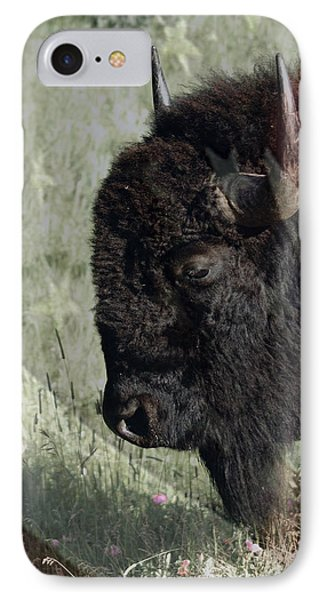 American Bison IPhone Case by Ernie Echols