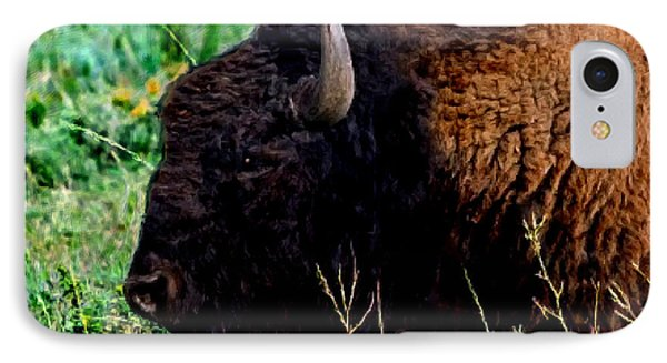 American Buffalo Yellowstone Painting Phone Case by Bob and Nadine Johnston
