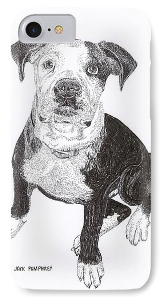 American Bull Dog As A Pup Phone Case by Jack Pumphrey