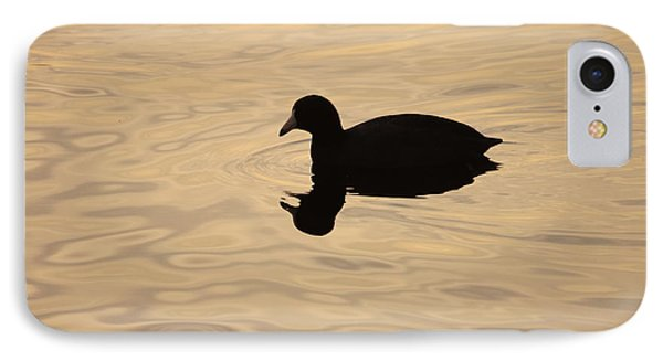 American Coot Silhouette IPhone Case by Brian Magnier