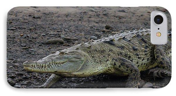 American Crocodile On The Tarcoles IPhone Case by Jon G. Fuller
