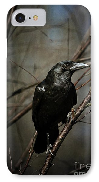 American Crow IPhone Case by Lois Bryan