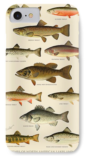 American Game Fish IPhone Case by Gary Grayson