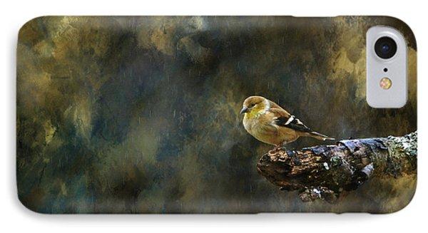 American Goldfinch 4 Phone Case by Deena Stoddard