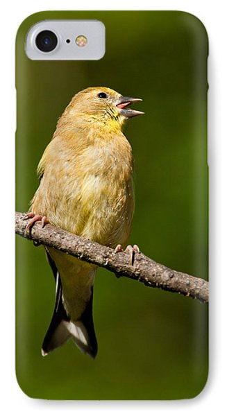 American Goldfinch Singing IPhone Case
