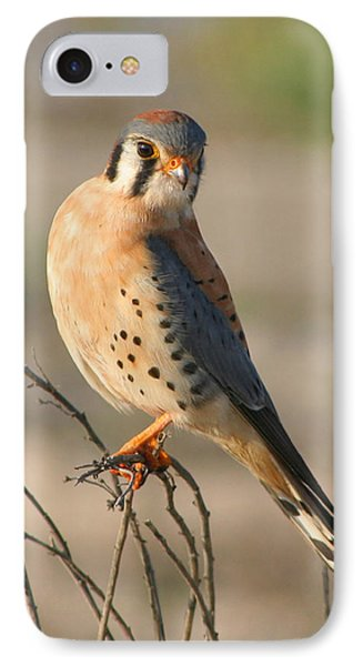 IPhone Case featuring the photograph American Kestrel by Bob and Jan Shriner