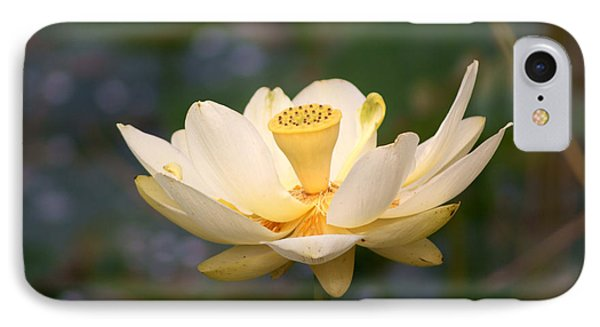 IPhone Case featuring the photograph American Lotus by B Wayne Mullins