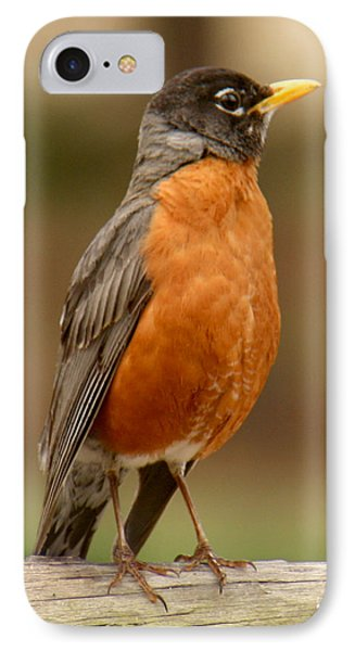 IPhone Case featuring the photograph American Robin by Bob and Jan Shriner