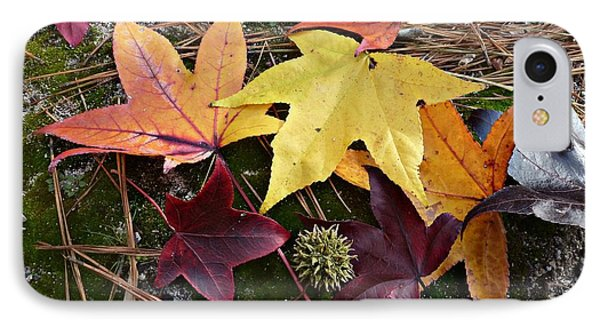 IPhone Case featuring the photograph American Sweetgum Autumn Display by William Tanneberger