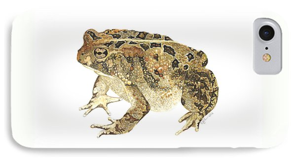 American Toad IPhone Case by Cindy Hitchcock