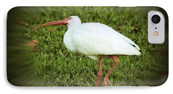 American White Ibis IPhone Case