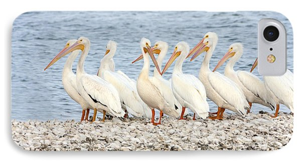 American White Pelicans IPhone Case by Susan Candelario