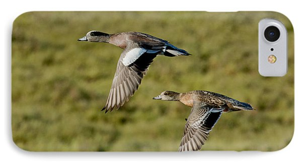 American Wigeon Pair In Flight IPhone Case