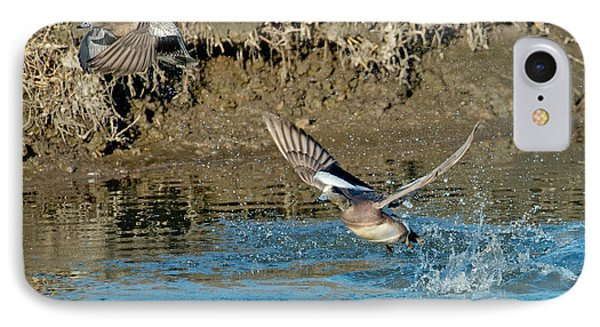 American Wigeon Pair Taking IPhone Case