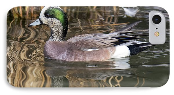 American Wigeon Reflections IPhone Case