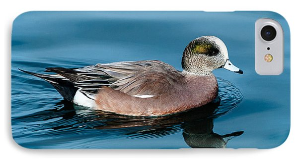 American Wigeon IPhone Case by Stephen  Johnson
