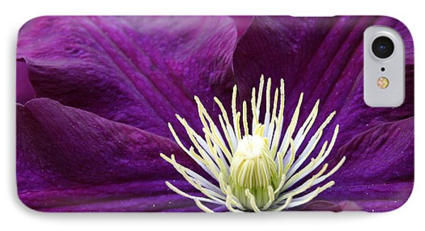 Amethyst Colored Clematis Phone Case by Kay Novy