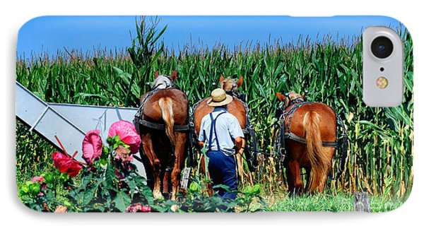 Amish Plowing IPhone Case by Gena Weiser